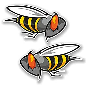 hiusan 2 x Angry Wasp Bee Vinyl Stickers Decals Travel Luggage Tag Lables Car Window Laptop Ipad Envenlop Stickers (10cm W x 6cm H)