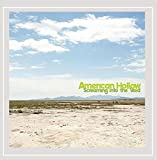 Screaming into the Void by American Hollow (2013-08-03)