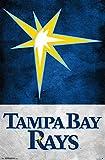 "Trends International Tampa Bay Rays - Burst Logo 18 Wall Poster, 22.375"" x 34"", Multi"