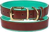 CollarDirect Leather Dog Collar Brass Buckle Soft