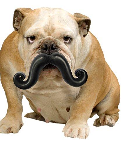 MOODY PET Humunga Stache Mini Dog Toy for