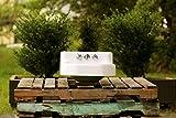 "Refinished 1954 Vintage Kohler Bath Sink 19"" Cast Iron Shelf Back Mid-Century Wall Mount Bath Sink Package"