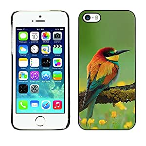 FlareStar Colour Printing Bird Spring Nature Floral Songbird Yellow cáscara Funda Case Caso de plástico para Apple iPhone 5 / iPhone 5S