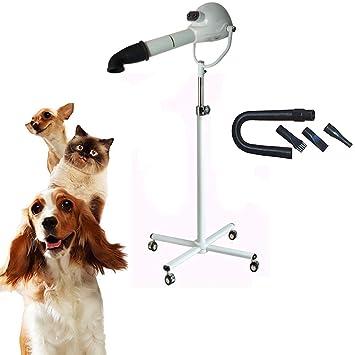 Z@SS Profesional Secadora De Pelo para Mascotas,Secador De Pelo Dog Cat con Soporte Y 3 Boquillas Diferentes,White: Amazon.es: Deportes y aire libre