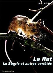 Le rat, la souris et autres variétés