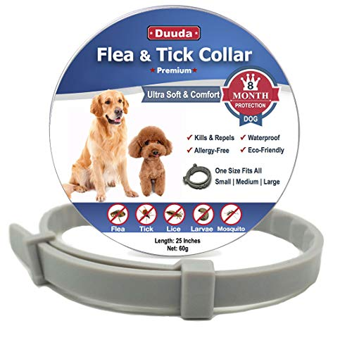 Buy flea collar for large dogs