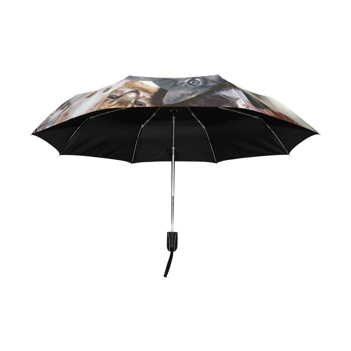 Amazon.com: JSTEL Cat Windproof UV Umbrellas Auto Open Close 3 Folding Golf Strong Durable Compact Travel Sun Umbrella, Portable Lightweight Easy Carrying: ...