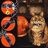 Halloween Cat Collar - Personalized Bow Tie Cute