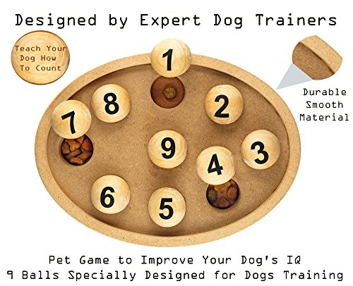 Petsmart Training Treats (Fun & Exciting Interactive IQ Dog Toy By Petories – Teach Your Dog How To Count While Having Fun, Perfect Pet Activity, Reward Your Puppy With Treats & Promote Healthy Brain Development)