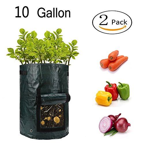 Potato Grow Bags, 2-Pack Green 10 Gallon Potato Planter bags with Flap and Handles for Planting Vegetables, Taro, Radish, Carrots, ()