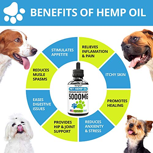 Kinpur Hemp Oil for Dogs & Cats - 5000mg - Premium Hemp Extract -...
