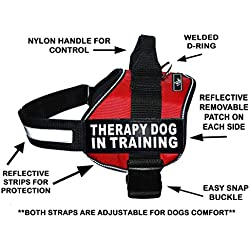 "Therapy Dog in Training Nylon Dog Vest Harness. Purchase Comes with 2 Reflective Therapy Dog in Training pathces. Please Measure Your Dog Before Ordering (Girth 19-25"", Red)"