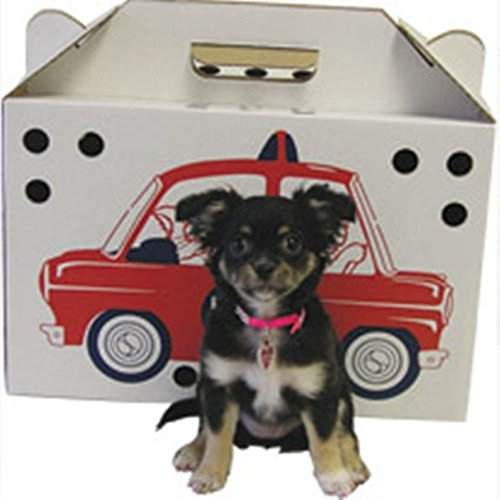 Kitty Kab Pet Carrier Sturdy Corrugated Carton Transporting Veterinarian 20 Ct