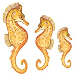 Underwater Tropical Seahorse Wall Sticker Mural