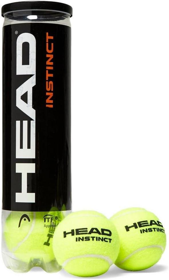 HEAD Instinct Bolas de Tenis (4 Bolas): Amazon.es: Deportes y aire ...