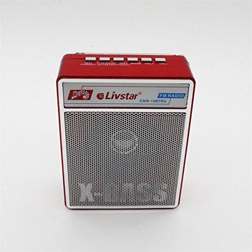 RADIO CAIXA DE SOM PORTATIL COM ENTRADA USB SD CARD E FM 3W RECARREGAVEL BIVOLT
