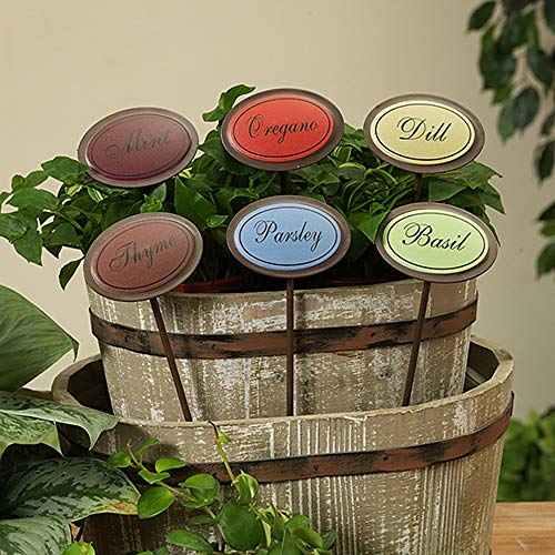 Set of 6 Oval Shaped Colorful Metal Herb Stakes Garden Plant Markers Dill Mint Oregano Thyme Basil and Parsley ()