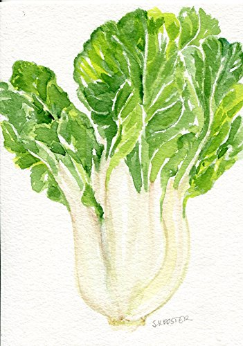 bok-choy-original-watercolor-painting-5-x-7-kitchen-decor-chinese-cabbage-hand-painted-not-a-print