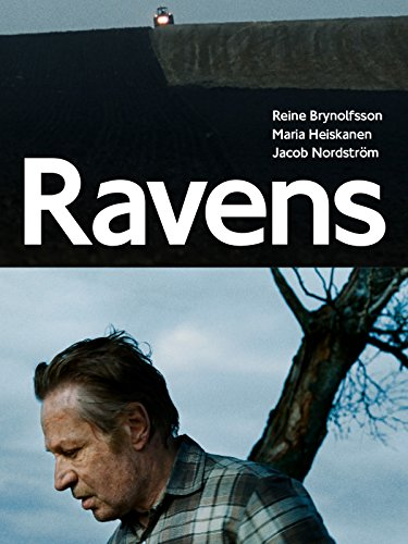 - Ravens