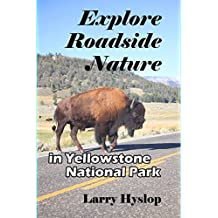 Explore Roadside Nature: in Yellowstone National Park