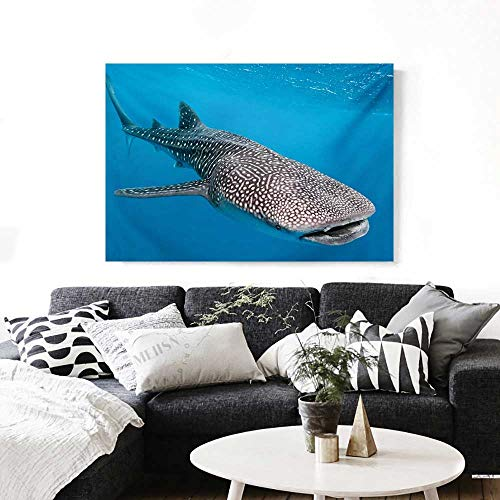 BlountDecor Sea Animals Canvas Wall Art for Bedroom Home Decorations Whale Shark Swimming Predators Hunter Clear Water Under The Sea Picture Print Art Stickers 48