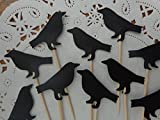 Black Raven Cupcake Toppers - Halloween Party Picks - Bird Food Picks - Black Crow - Samhain Party (Set of 24)