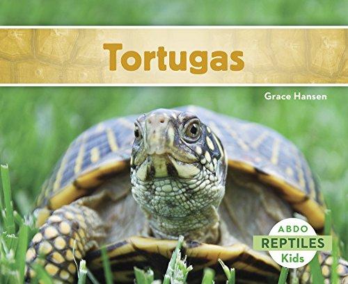 Tortugas (Reptiles) (Spanish Edition) [Grace Hansen] (Tapa Blanda)