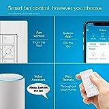 Lutron Caseta Smart Home Ceiling Fan Speed Control