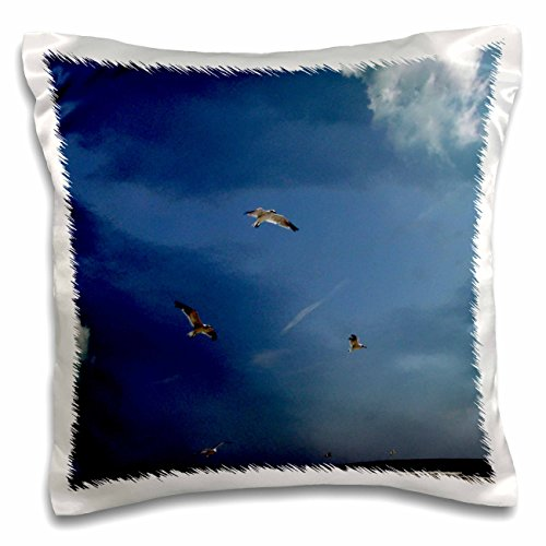 Gull Sea Trio (Dawn Gagnon Photography - Beach Scenes - Seagulls in flight, a trio flying against a vivid blue beach sky - 16x16 inch Pillow Case (pc_165598_1))