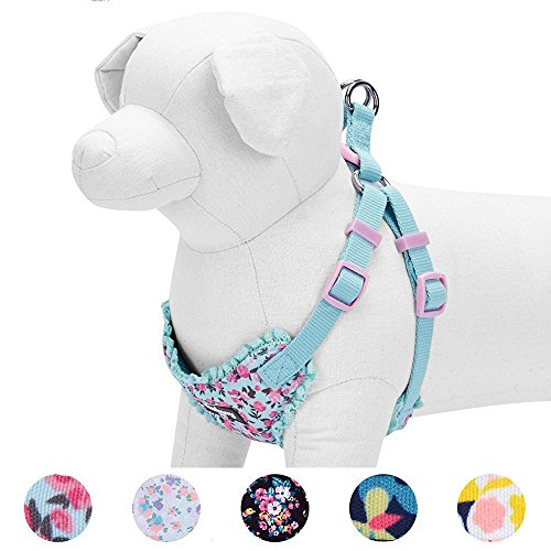 Blueberry Pet 5 Patterns Soft & Comfy Spring Made Well Cute Floral No Pull Mesh Dog Harness Vest in Light Blue, Chest Girth 17.5