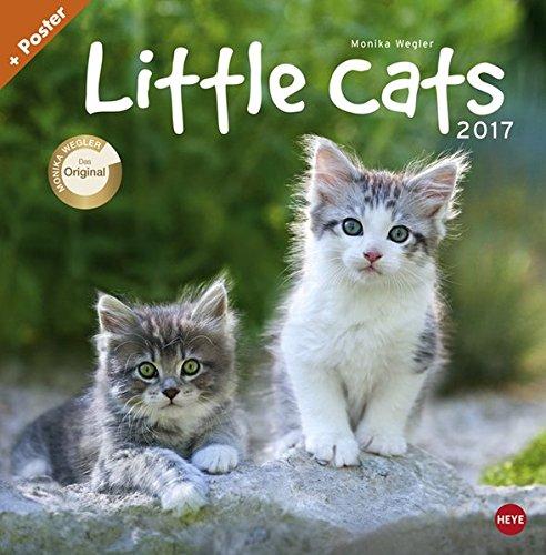 Little Cats Broschurkalender - Kalender 2017