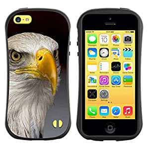 LASTONE PHONE CASE / Suave Silicona Caso Carcasa de Caucho Funda para Apple Iphone 5C / eagle America freedom bird national gold