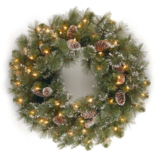 National Tree 24 Inch Glittery Pine Wreath with Cones, Snowflakes and 50 Clear Lights (GP1-300-24W-1) by National Tree Company