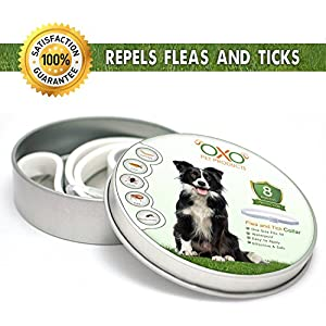 "OXO PET PRODUCTS Tick and Flea Collar For Dogs. Natural Repellent With Essential Oils.""8 Months Protection"".BEST Natural Pest Solution For Dogs Of All Sizes and Ages. Waterproof, 25"" 103"