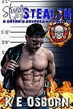 Stung by Stealth: A Satan's Savages MC Novel #3 (Volume 3)
