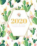 img - for 2020 16 Month Monthly & Weekly Planner (Sept 2019 - Dec 2020): Succulent Cactus Cover (Succulent 2020) book / textbook / text book