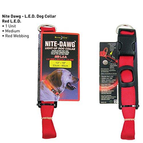 Nite Dawg LED Dog Collar Size: Medium (13