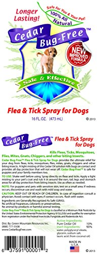 Cedar Bug Free Flea And Tick Spray For Dogs Kill Fleas