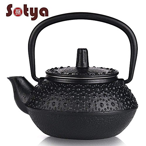 Cast Iron Japanese Tetsubin Health cool cute herbal Iron Tea