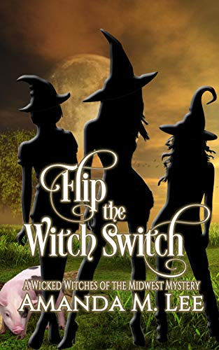 (Flip the Witch Switch (Wicked Witches of the Midwest Book)