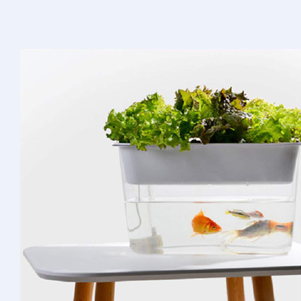 Acquario serbatoio di pesci rossi acquario pesci e verdure simbiotico pigro ecologico water-free desktop fish tank piccolo combattimento pesce tartaruga creativo ultra-bianco desktop fish tank