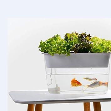 LSHUAIDJ Acuario Goldfish Tank Acuario Pescado y Verduras simbiótico Perezoso ecológico sin Agua pecera de Escritorio pecera pequeña Pelea de Peces Tortuga ...
