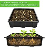10 Pack Strong Plant Growing Trays, Extra