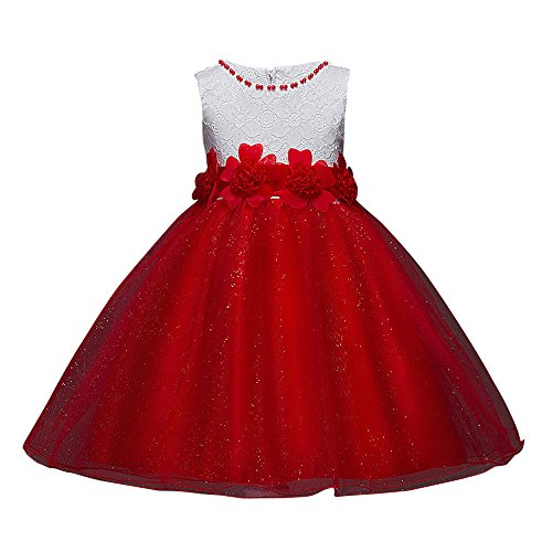 Birdfly 4-11T Flower Girls Shiny Tulle Princess Dress Children Kids Birhday Pageant Party Dresses (Red, (Ballerina Swing)