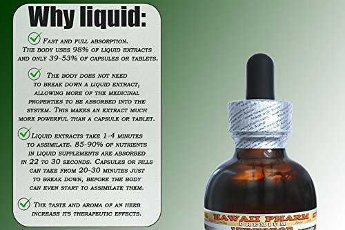 Dong Quai Alcohol-FREE Liquid Extract, Organic Chinese Angelica (Angelica sinensis) Dried Root Glycerite 4x4 oz by HawaiiPharm (Image #3)