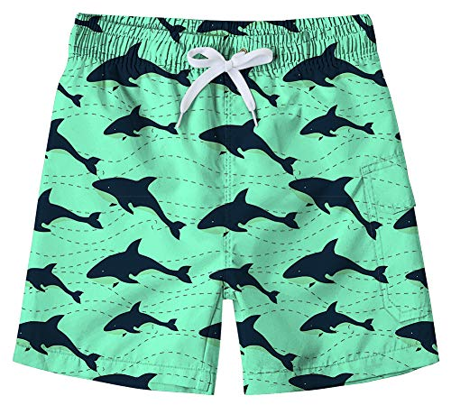 BFUSTYLE Toddler Baby Boy Cute Shark Mint Green Flow Ultralight Sun Protection Holiday Navy Swim Shorts Boyshorts with Drawstrinf Closure 3T 4T