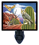 Night Light - Great Horned Owl - Birds - Southwest - Cactus LED NIGHT LIGHT