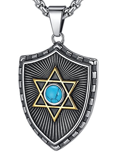 (LineAve Men's Stainless Steel Large Star of David Shield Pendant Necklace, Blue, 23