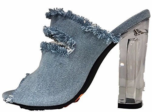 Open Toe Lucite Clear Perspex Block Heel Mule Slip On Shoe Denim Blue 6.5 (Heel Clear Mule)