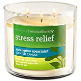 Bath and Body wil 3-wick confined version Candle AROMATHERAPY diverse variety (Stress Relief - Eucalyptus Spearmint)